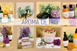 iris05
