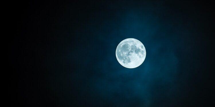 luna gusanos